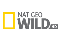 Logo - National Geographic Wild HD